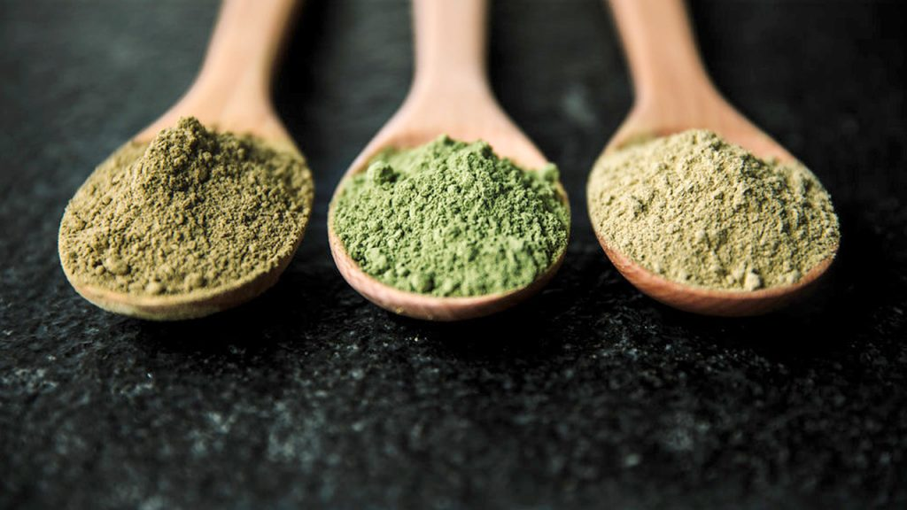 kratom powder vs extract
